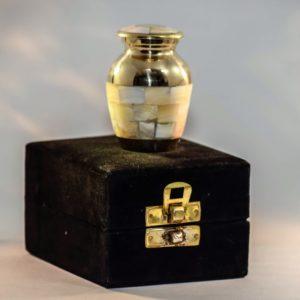 mini urn ivoor