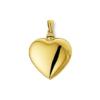 Gouden Ashanger Hart Groot