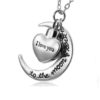 ashanger to the moon and back zilver